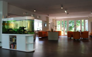 Flossenheld-Aquarienpflege