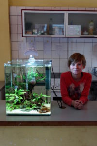 Flossenheld-Aquaristik-Service-Berlin-Aquarienpflege-Schule